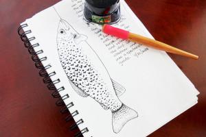blog ink 7